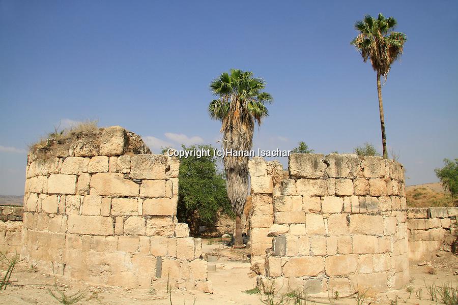 Israel, Upper Galilee, Hurvat Minim (Khirbet al-Minya) by the Sea of Galilee, ruins of an 8th century palace