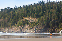 Short Sands, Twin Rocks, Oregon Coast - New