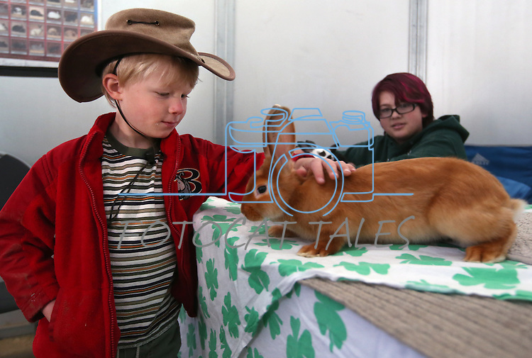 McKenzie Repp, 12, watches Jaxon Hardt, 4, pet a satin rabbit during the annual Farm Days event at Fuji Park in Carson City, Nev., on Thursday, April 17, 2014.<br /> Photo by Cathleen Allison
