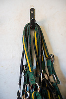 FAO Laura Lean.<br /> Friday 20 January 2017<br /> Pictured: Bridles hang on the wall <br /> Re: Sue Scourfield's riding school is  being hit by increasing business rates.