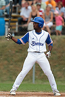 25 july 2010: Felix Brown of France is seen at bat during France 6-1 victory over Czech Republic, in day 3 of the 2010 European Championship Seniors, in Neuenburg, Germany.