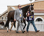 DEL MAR, CA - NOVEMBER 03: Forever Unbridled #6, ridden by John Velazquez, walks in the paddock prior to winning the Longines Breeders\'92 Cup Distaff on Day 1 of the 2017 Breeders' Cup World Championships at Del Mar Thoroughbred Club on November 3, 2017 in Del Mar, California. (Photo by Michael McInally/Eclipse Sportswire/Breeders Cup)