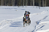 Musher Egil Ellis on day three of the oldest continuously run sled dog race in the world, the 2003 Open North American Sled dog championships, Fairbanks, Alaska. The annual race consists of three daily races, the combined fastest time wins.