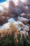 August 20, 1992 Angels Camp, California -- Old Gulch Fire— Wind created by raging flames billows smoke into mushroom cloud over Avery.  The Old Gulch Fire raged over some 18,000 acres, destroying 42 homes while threatening the Mother Lode communities of Murphys, Sheep Ranch, Avery and Forest Meadows.