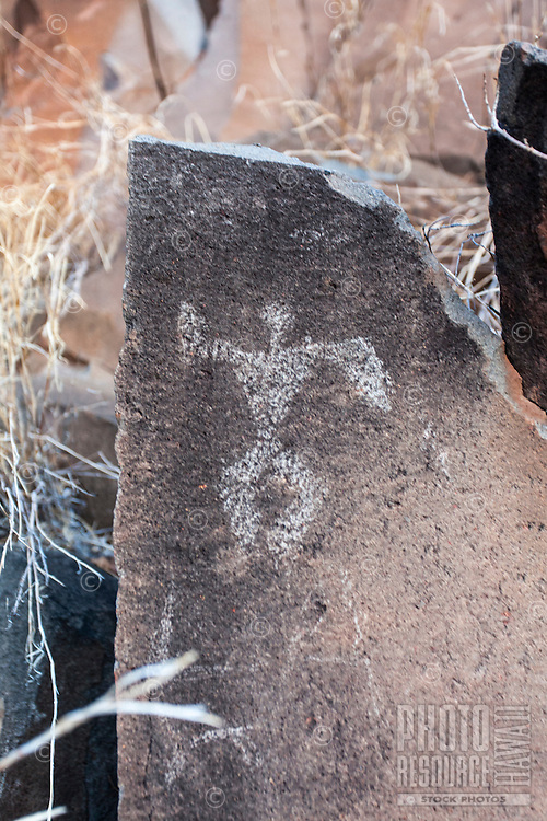 Authentic Hawaiian petroglyph of a human figure, Olowalu, Maui