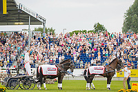 2014 TITLE WINNER: AUS-Boyd Exel: DRIVING MARATHON: 2014 GER-CHIO Aachen Weltfest des Pferdesports (Saturday 19 July) CREDIT: Libby Law COPYRIGHT: LIBBY LAW PHOTOGRAPHY - NZL