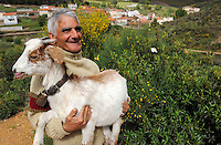 Domestic goats eating bush<br /> , Salamanca Region, Castilla y Le&oacute;n, Spain