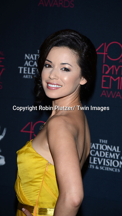 Teresa Castillo attends the 40th Annual Daytime Creative Arts Emmy Awards on June 14, 2013 at the Westin Bonaventure Hotel in Los Angeles, California.