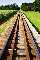Train tracks near Cairns, Queensland, Australia RESERVED USE - NOT FOR DOWNLOAD -  FOR USE CONTACT TIM GRAHAM