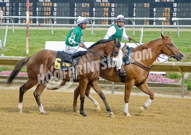 Rehab Mo before The Par Four Stakes at Delaware Park on 7/12/12