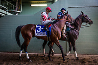 ARCADIA, CA -APRIL 08: Battle of Midway #3, ridden by Corey Nakatani walk to the track at the Santa Anita Derby at Santa Anita Park on April 08, 2017 in Arcadia, California. (Photo by Alex Evers/Eclipse Sportswire/Getty Images)