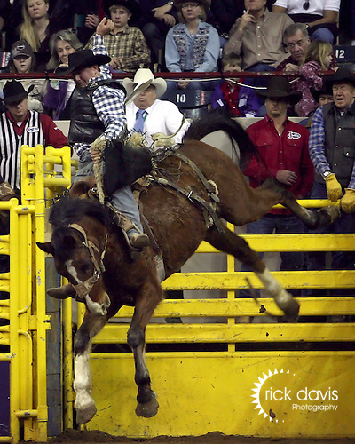 1/24/09--Photo by Rick Davis--PRCA cowboy Jim Berry of Rocky Mountain House, Alberta scores an 80 point ride on the Kesler Rodeo Company bronc Instant Request during action at the 103rd National Western Stock Show and Rodeo in Denver, Colorado.