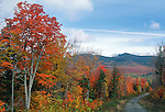 Gravel road in the Fall, Carrabassett Valley, Maine, USA