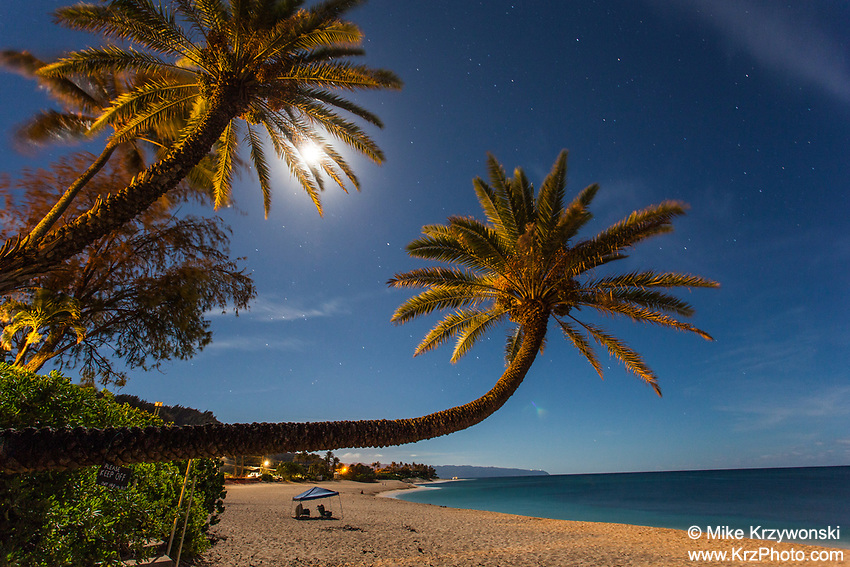 Palm trees under a full moon at night on Sunset Beach, Oahu