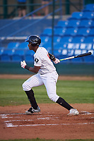 Great Falls Voyagers Luis Mieses (5) at bat during a Pioneer League game against the Missoula Osprey at Centene Stadium at Legion Park on August 19, 2019 in Great Falls, Montana. Missoula defeated Great Falls 1-0 in the second game of a doubleheader. (Zachary Lucy/Four Seam Images)