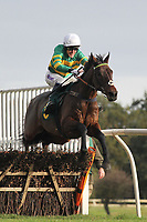 Race winner Vulcanite ridden by A P McCoy in jumping action during the Kettle Chips Handicap Hurdle