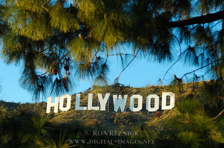 Hollywood Sign Vignette, Mount Lee, Hollywood Hills, Los Angeles, California