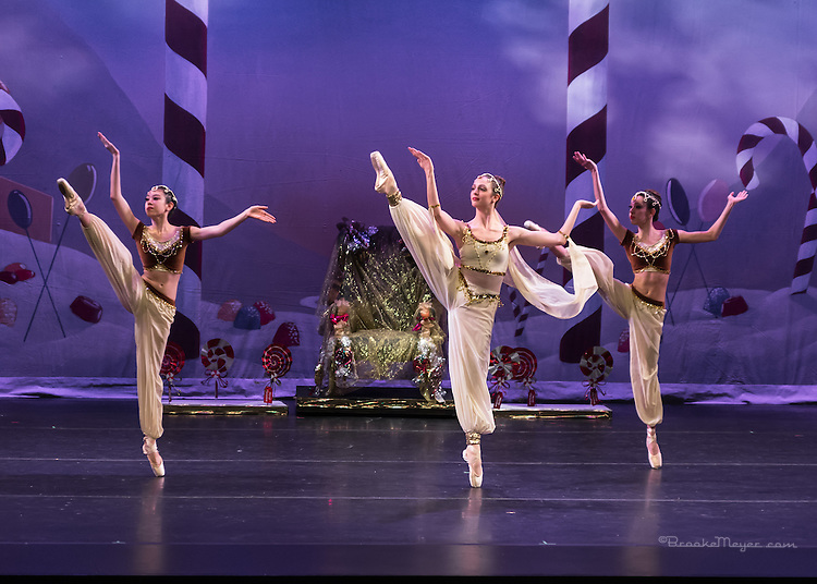 "Cary Ballet Performance ""Visions Of Sugarplums"", Cary Arts Center, Cary, North Carolina, 14 Dec 2012"