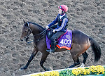 October 31, 2019: Breeders' Cup Filly & Mare Turf entrant Fleeting, trained by Aidan P. O'Brien, exercises in preparation for the Breeders' Cup World Championships at Santa Anita Park in Arcadia, California on October 31, 2019. John Voorhees/Eclipse Sportswire/Breeders' Cup/CSM