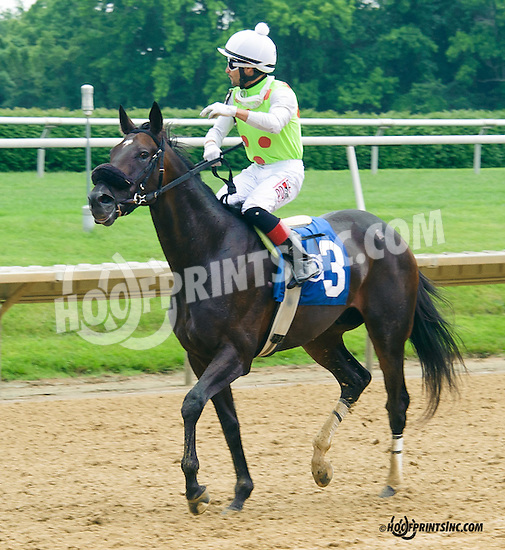 Freelander winning at Delaware Park on 6/15/15 - Xavier Perez rides his 700th winner!