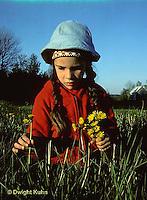 MD03-030z  Dandelion - child picking dandelions in meadow - Taraxacum officinale