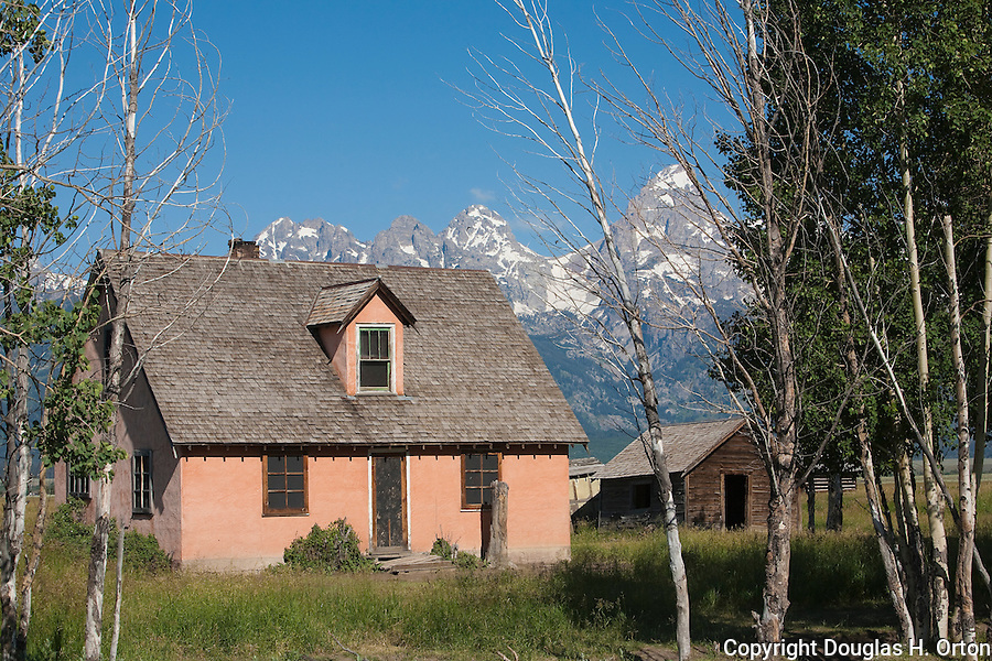 Remains of a historic homel along Mormon Row frame the Teton Range.  Grand Teton National Park, United States, Wyoming.  Mormon Row is a line of historic homesteads along Jackson-Moran Road, Grand Teton National Park.