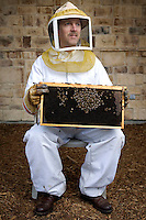 Bee keeper Alan Eynon (cq) with a tray of honey bees at his home in Dallas, Texas, Saturday, January 10, 2008. Eynon, an engineer who began bee keeping several years ago as a hobby, says even as a kid collecting bugs was fascinating...PHOTOS/ MATT NAGER
