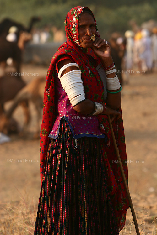 05.11.2008 Pushkar(Rajasthan)<br /> <br /> Woman camel driver during the pushkar fair.<br /> <br /> Femme chamelier pendant la foire aux chameaux.