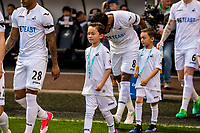 Sunday April 02 2017 <br /> Pictured: Mascots<br /> Re: Premier League match between Swansea City and Middlesbrough at The Liberty Stadium, Swansea, Wales, UK. SUnday 02 April 2017