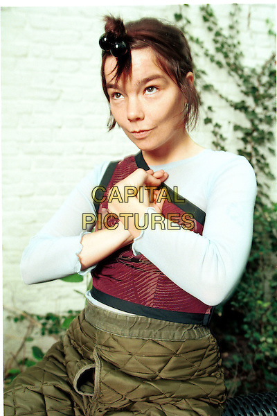 BJORK.Photo Session.Ref:Ian Jennings.half length off the shoulder red top flower print logo arms hands together green patchwork trousers unusual hair style bobbles.www.capitalpictures.com.sales@capitalpictures.com.©Capital Pictures...