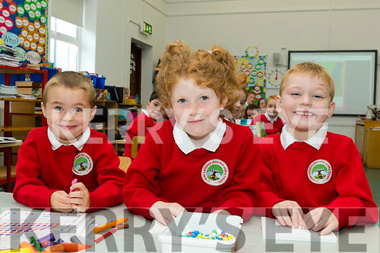 New beginning<br /> --------------------<br /> Derryquay Nation school had 3 new bright stars join the class room last Monday morning September 4th.