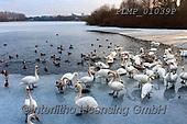 Marek, CHRISTMAS LANDSCAPES, WEIHNACHTEN WINTERLANDSCHAFTEN, NAVIDAD PAISAJES DE INVIERNO, photos+++++,PLMP01039P,#xl#