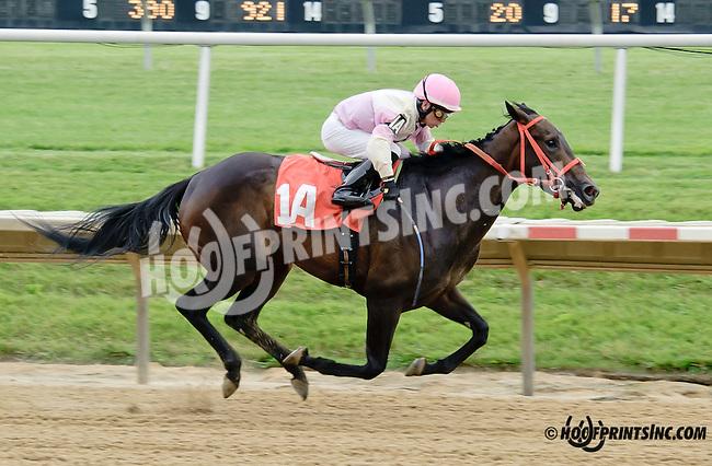 Imperial Devil winning at Delaware Park racetrack on 6/21/14