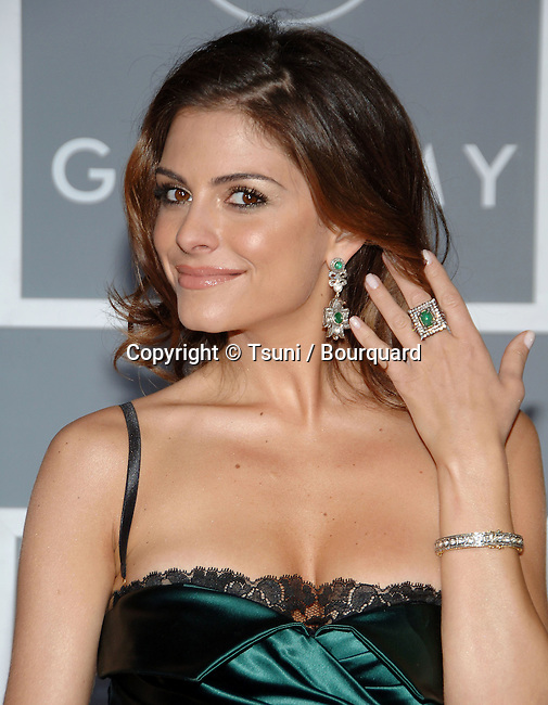 Maria Menunos arriving at the 49th Annual Grammy's  at the Staples Center in Los Angeles. February 11, 2007.<br /> <br /> eye contact<br /> headshot<br /> smile<br /> green dress