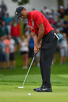 Tiger Woods (USA) watches his putt on 1 during Rd4 of the 2019 BMW Championship, Medinah Golf Club, Chicago, Illinois, USA. 8/18/2019.<br /> Picture Ken Murray / Golffile.ie<br /> <br /> All photo usage must carry mandatory copyright credit (© Golffile | Ken Murray)