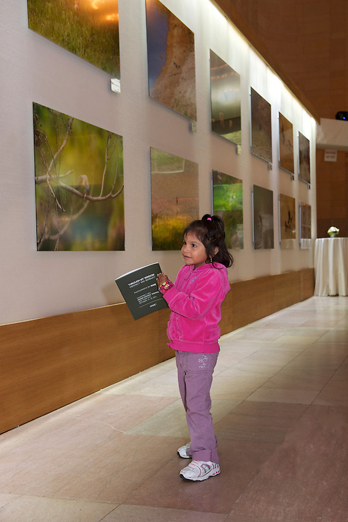 A captivated little girl at the Ahae Exhibit