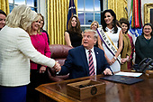 United States President Donald J. Trump (C) shakes hands with US Representative Liz Cheney (Republican of Wyoming) (L) during a signing ceremony for the bill, 'the Women's Suffrage Centennial Commemorative Coin Act', in the Oval Office of the White House in Washington, DC, USA, 25 November 2019. Trump signed 'H.R. 2423, the Women's Suffrage Centennial Commemorative Coin Act' - a bill directing the US Treasury to mint and issue up to four hundred thousand one-dollar silver coins honoring women that played a role in gathering support for the 19th Amendment.<br /> Credit: Michael Reynolds / Pool via CNP