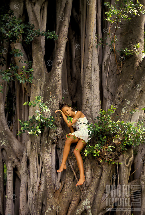 Reflective young girl sitting in a large banyan tree, Oahu