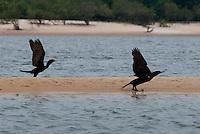 Tapajós  Praias e Igarapés<br /> Foto Carlos Berretto<br /> Santarém, Pará, Brasil