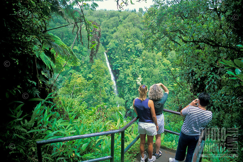 Sightseers stop to view scenic Kahuna Falls, just a short walk away from Akaka Falls in Akaka Falls State Park.