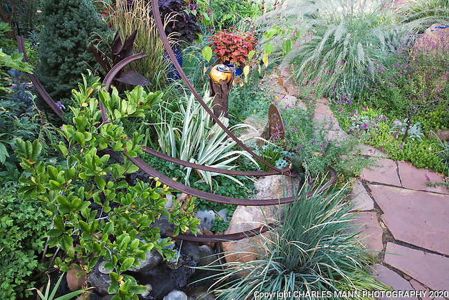 A busy scene keeps the eye occupied in this vignette from Dan Johnson's Denver garden with an array of  colors, shapes and textures.