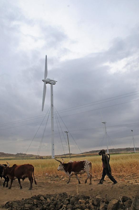Windmills in the Tigray region of Ethiopia.