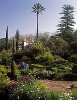 Portugal, Madeira, Funchal - Blandy's Garden | Portugal, Madeira, Funchal - Blandy's Garden