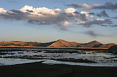 Altiplano, Peru. Open water with reeds on the flat open altiplano at dusk with mountains in the background.