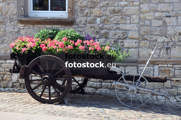 mit Blumen bepflanzte alte Holzkarre