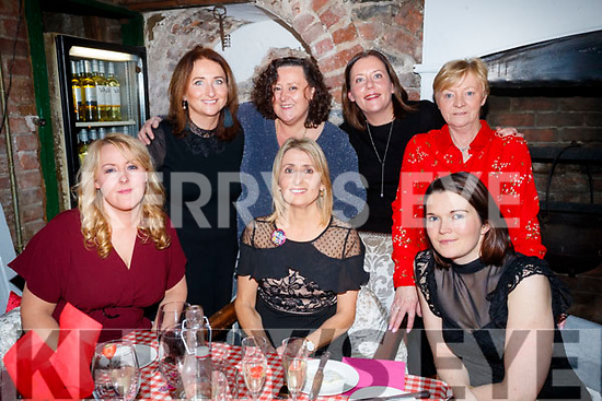 Sarah Quirke, who celebrated her 50th Birthday with family and friends in Finnegans restaurant, Tralee, on Saturday night last, front l-r: Melissa Perry, Sarah Quirke and Sarah Long. Back l-r: Mary Claire Crosby, Suzanne Murphy, Martina Greer and Teresa O'Donoghue.