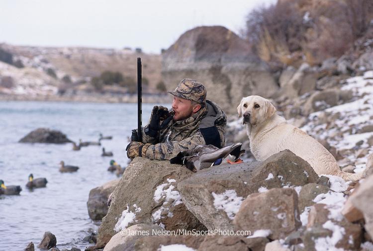 34-497. A waterfowler with a yellow Labrador retriever calls ducks along the Snake River in Idaho.