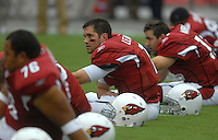 Aug 18, 2007; Glendale, AZ, USA; Arizona Cardinals quarterback Matt Leinart (7) against the Houston Texans at University of Phoenix Stadium. Mandatory Credit: Mark J. Rebilas-US PRESSWIRE Copyright © 2007 Mark J. Rebilas