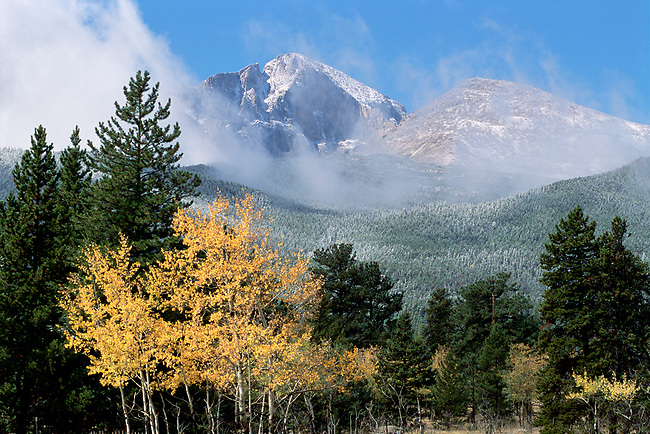Tahosa Valley, Longs Peak, evergreen trees, aspen, mist, fog, autumn, fall, Rocky Mountain National Park, Colorado