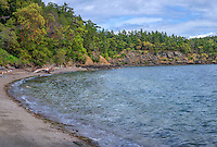 WASJ_D220 - USA, Washington, San Juan Islands, Orcas Island, Obstruction Pass State Park, Curved gravel beach, rocky shoreline and forest of Pacific madrone and Douglas fir.